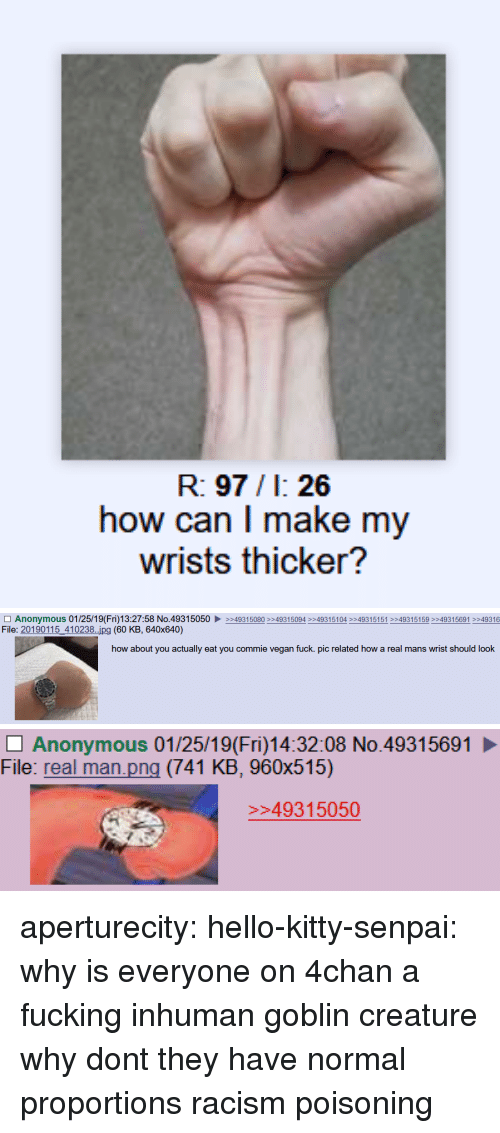 4chan, Hello, and Racism: R: 97/1: 26  how can I make my  wrists thicker?   □ Anonymous 01 /25/1 9( Fri)13:27:58 No.4931 5050 ▶  File: 20190115_410238..ipg (60 KB, 640x640)  >>493 15080 >>4931 5094 >>4931 5104 >>4931 5151 >>493 15 159 >>493 15691 >>49316  how about you actually eat you commie vegan fuck. pic related how a real mans wrist should look   Anonymous 01/25/19(Fri)14:32:08 No.49315691  File: real man.png (741 KB, 960x515)  49315050 aperturecity: hello-kitty-senpai: why is everyone on 4chan a fucking inhuman goblin creature why dont they have normal proportions   racism poisoning