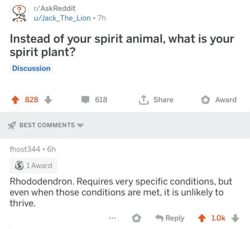 Animal, Best, and Lion: r/AskReddit  ?  u/Jack_The_Lion 7h  Instead of your spirit animal, what is your  spirit plant?  Discussion  828  618  Share  Award  BEST COMMENTS  fhost344 6h  S 1 Award  Rhododendron. Requires very specific conditions, but  even when those conditions are met, it is unlikely to  thrive.  Reply  1.0k