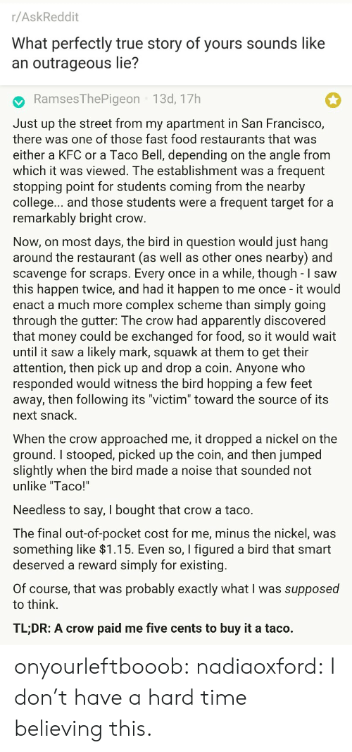 "Complex: r/AskReddit  What perfectly true story of yours sounds like  an outrageous lie?   RamsesThePigeon 13d, 17h  Just up the street from my apartment in San Francisco,  there was one of those fast food restaurants that was  either a KFC or a Taco Bell, depending on the angle from  which it was viewed. The establishment was a frequent  stopping point for students coming from the nearby  college... and those students were a frequent target for a  remarkably bright crow  Now, on most days, the bird in question would just hang  around the restaurant (as well as other ones nearby) and  scavenge for scraps. Every once in a while, though - I saw  this happen twice, and had it happen to me once - it would  enact a much more complex scheme than simply going  through the gutter: The crow had apparently discovered  that money could be exchanged for food, so it would wait  until it saw a likely mark, squawk at them to get their  attention, then pick up and drop a coin. Anyone who  responded would witness the bird hopping a few feet  away, then following its ""victim"" toward the source of its  next snack.  When the crow approached me, it dropped a nickel on the  ground. I stooped, picked up the coin, and then jumped  slightly when the bird made a noise that sounded not  unlike ""Taco!'  Needless to say, I bought that crow a taco.  The final out-of-pocket cost for me, minus the nickel, was  something like >l.T5. Even so, I figured a bird that smart  deserved a reward simply for existing  Of course, that was probably exactly what I was supposed  to think.  TL;DR: A crow paid me five cents to buy it a taco. onyourleftbooob:  nadiaoxford: I don't have a hard time believing this."