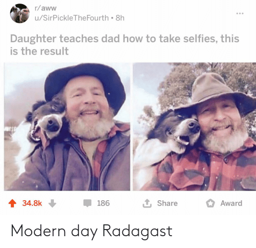 Aww, Dad, and How To: r/aww  u/SirPickleTheFourth 8h  Daughter teaches dad how to take selfies, this  is the result  1 34.8k  1 Share  186  Award Modern day Radagast