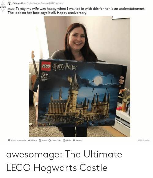 castle: r/harrypotter Posted by u/englishpsycho87 1 day ago  24.3k  u Media To say my wife was happy when I walked in with this for her is an understatement.  The look on her face says it all. Happy anniversary!  16+  71043  Cestie  530 ComShareSave Give Gold Hide Report  87% Upvoted awesomage:  The Ultimate LEGO Hogwarts Castle