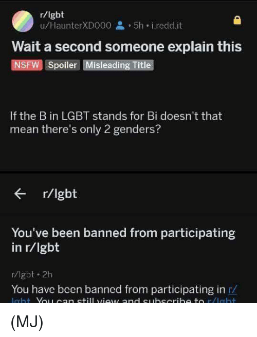 2 Genders: r/lgbt  u/HaunterXD000 2 5h i.redd.it  Wait a second someone explain this  NSFW Spoiler Misleading Title  If the B in LGBT stands for Bi doesn't that  mean there's only 2 genders?  r/lgbt  You've been banned from participating  in r/Igbt  r/lgbt 2h  You have been banned from participating in r/ (MJ)