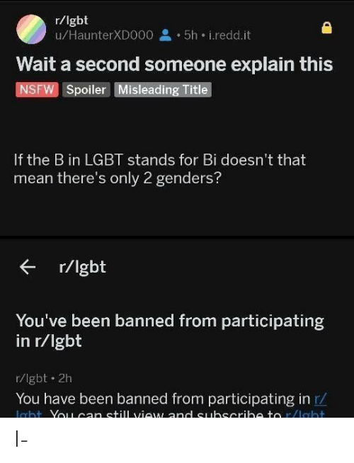 Only 2 Genders: r/lgbt  u/HaunterXD000  5h i.redd.it  Wait a second someone explain this  NSFW Spoiler Misleading Title  If the B in LGBT stands for Bi doesn't that  mean there's only 2 genders?  r/lgbt  You've been banned from participating  in r/lgbt  r/lgbt 2h  You have been banned from participating in r  ight YouLcan still view and Suhscribe to r/laht I-