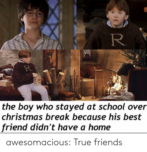best friend: R  the boy who stayed at school over  christmas break because his best  friend didn't have a home awesomacious:  True friends