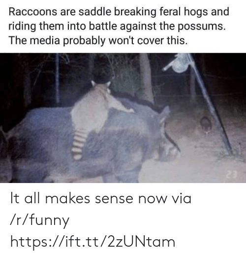 Possums: Raccoons are saddle breaking feral hogs and  riding them into battle against the possums.  The media probably won't cover this. It all makes sense now via /r/funny https://ift.tt/2zUNtam