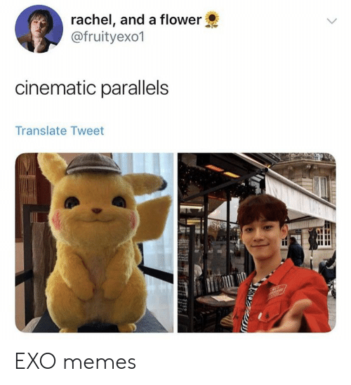 Memes, Flower, and Translate: rachel, and a flower  @fruityexo1  cinematic parallels  Translate Tweet EXO memes