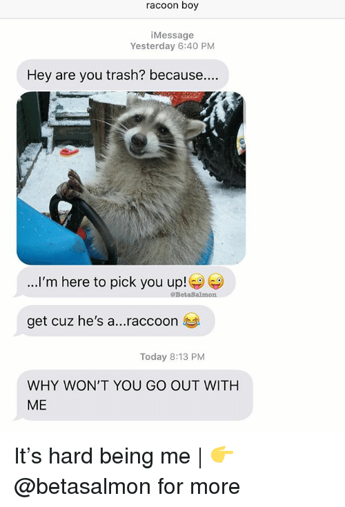 racoon: racoon boy  iMessage  Yesterday 6:40 PNM  Hey are you trash? because...  ...I'm here to pick you up!  @BetaSalmon  get cuz he's a  raccoon  Today 8:13 PM  WHY WON'T YOU GO OUT WITH  ME It's hard being me | 👉 @betasalmon for more