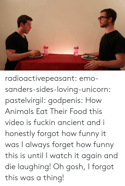 Animals, Emo, and Food: radioactivepeasant: emo-sanders-sides-loving-unicorn:  pastelvirgil:  godpenis:  How Animals Eat Their Food   this video is fuckin ancient and i honestly forgot how funny it was  I always forget how funny this is until I watch it again and die laughing!   Oh gosh, I forgot this was a thing!