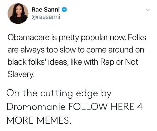 Dank, Memes, and Rap: Rae Sanni  @raesanni  Obamacare is pretty popular now. Folks  are always too slow to come around on  black folks' ideas, like with Rap or Not  Slavery. On the cutting edge by Dromomanie FOLLOW HERE 4 MORE MEMES.