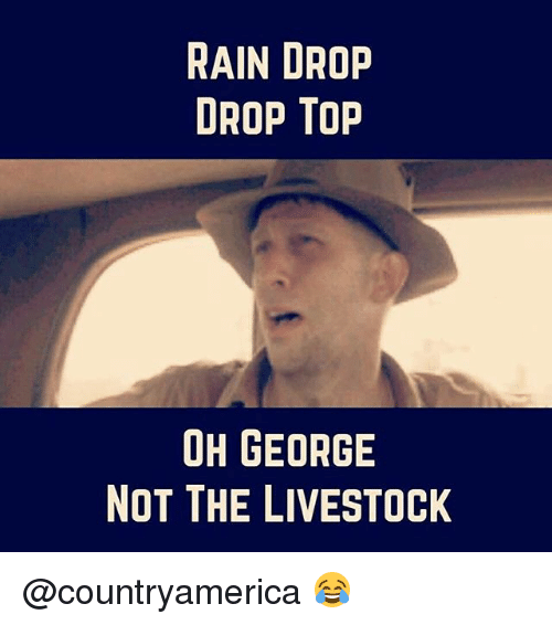 Drop Tops: RAIN DROP  DROP Top  OH GEORGE  NOT THE LIVESTOCK @countryamerica 😂