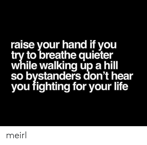 Life, MeIRL, and Fighting: raise your hand if you  try to breathe quieter  while walking up a hill  so bystanders don't hear  you fighting for your life meirl
