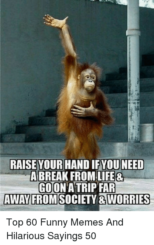 Need A Break: RAISE YOUR HAND IFYOU NEED  A BREAK FROM LIFE&  GOON A TRIP FAR  AWAY FROMSOCIETY &WORRIES Top 60 Funny Memes And Hilarious Sayings 50