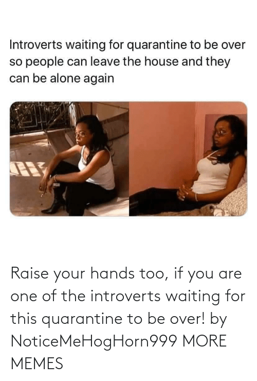 hands: Raise your hands too, if you are one of the introverts waiting for this quarantine to be over! by NoticeMeHogHorn999 MORE MEMES