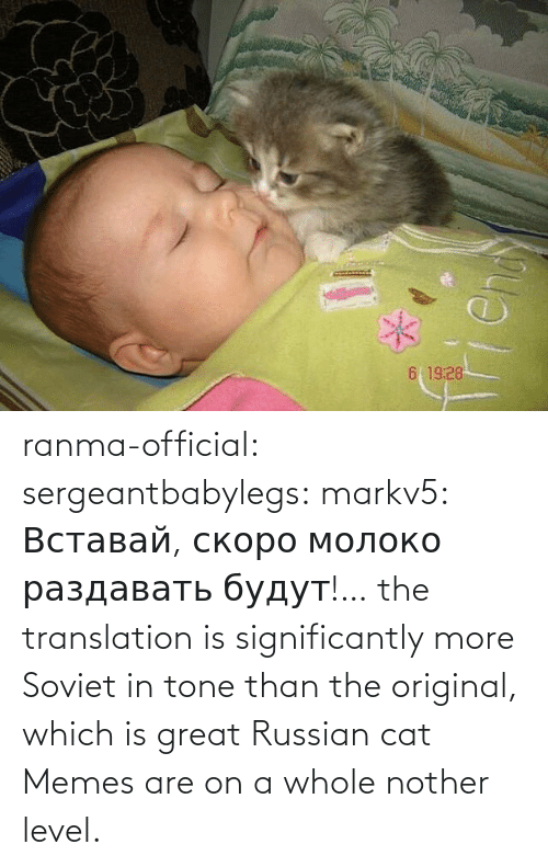 tone: ranma-official: sergeantbabylegs:  markv5: Вставай, скоро молоко раздавать будут!…  the translation is significantly more Soviet in tone than the original, which is great    Russian cat Memes are on a whole nother level.
