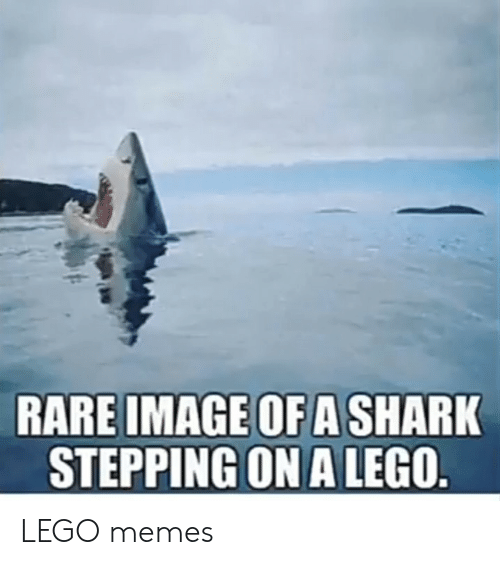 Stepping: RARE IMAGE OF A SHARK  STEPPING ON A LEGO. LEGO memes