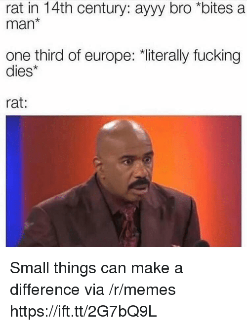"Fucking, Memes, and Europe: rat in 14th century: ayyy bro *bites a  man*  one third of europe: ""literally fucking  dies*  rat: Small things can make a difference via /r/memes https://ift.tt/2G7bQ9L"