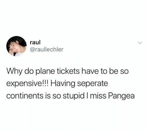 pangea: raul  @raullechler  Why do plane tickets have to be so  expensive!! Having seperate  continents is so stupid I miss Pangea