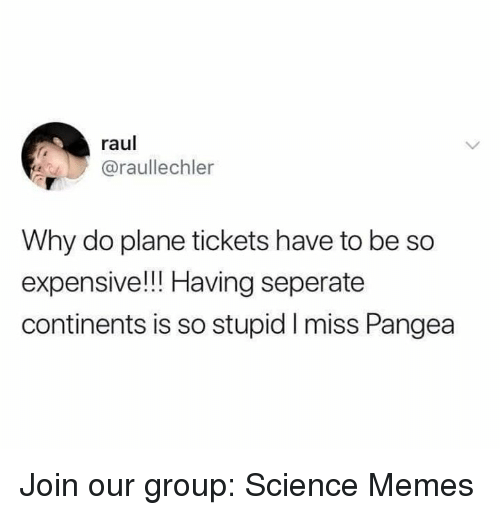 pangea: raul  @raullechler  Why do plane tickets have to be so  expensive!!! Having seperate  continents is so stupid I miss Pangea Join our group: Science Memes
