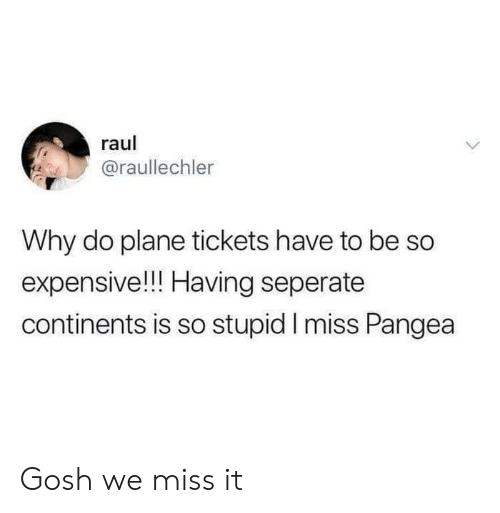 pangea: raul  @raullechler  Why do plane tickets have to be So  expensive!!! Having seperate  continents is so stupid I miss Pangea Gosh we miss it
