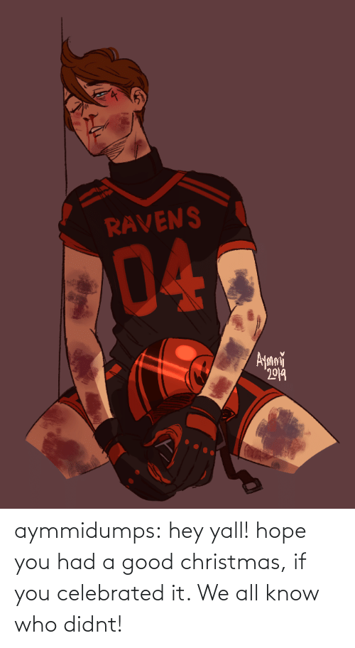 Celebrated: RAVENS  04  Ayani  2019 aymmidumps: hey yall! hope you had a good christmas, if you celebrated it. We all know who didnt!