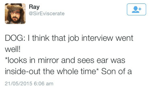 Inside Out, Job Interview, and Mirror: Ray  @SirEviscerate  DOG: I think that job interview went  well!  looks in mirror and sees ear was  inside-out the whole time Son of a  21/05/2015 6:06 am