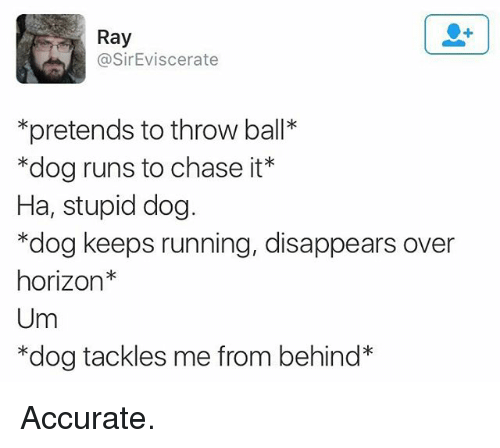 "Funny, Chase, and Running: Ray  @SirEviscerate  *pretends to throw ball*  ""dog runs to chase it*  Ha, stupid dog.  *dog keeps running, disappears over  horizon  Um  *dog tackles me from behind* Accurate."