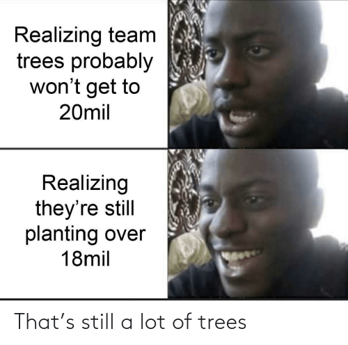 Trees, Team, and Still: Realizing team  trees probably  won't get to  20mil  Realizing  they're still  planting over  18mil That's still a lot of trees
