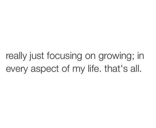 aspect: really just focusing on growing; in  every aspect of my life. that's all.