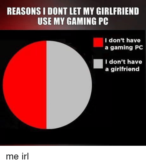 gaming pc: REASONS I DONT LET MY GIRLFRIEND  USE MY GAMING PC  I don't have  a gaming PC  I don't have  a girlfriend me irl