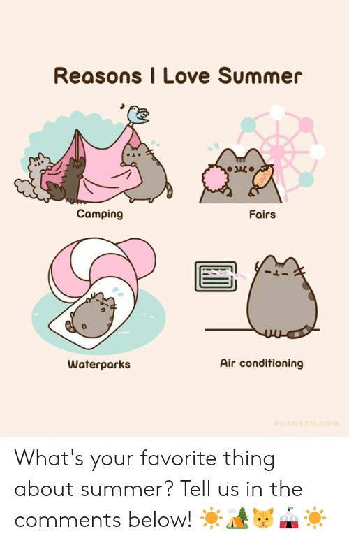 Dank, Love, and Summer: Reasons I Love Summer  Camping  Fairs  Air conditioning  Waterparks  PUSHEEN.COM What's your favorite thing about summer? Tell us in the comments below! ☀️🏕️🐱🎪☀️