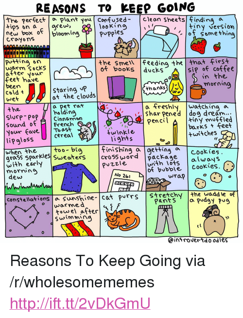 """Books, Confused, and Coffee: REASONS TO KEEP GOING  the perfectPlant you Confused- Cleon sheets finding a  looKino  ertec  rew, """"  new box o blooming F 