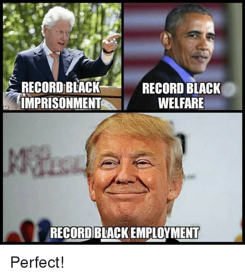 Memes, Black, and Record: RECORD BIACK  IMPRISONMENT  RECORD BLACK  WELFARE  RECORD BLACK EMPLOYMENT Perfect!