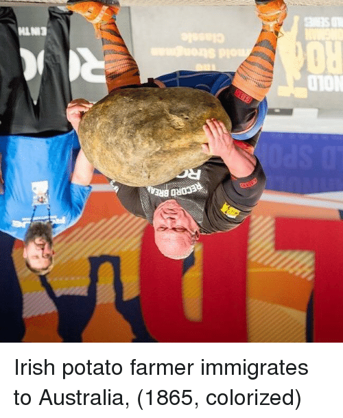 Irish, Australia, and Potato: RECORD BRE  NOLD  RO  EINTH Irish potato farmer immigrates to Australia, (1865, colorized)