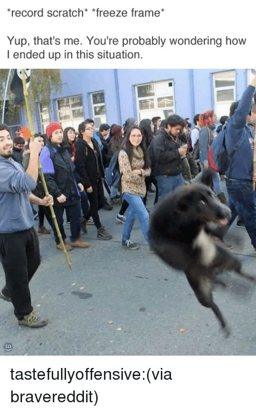 Freeze Frame: record scratch* *freeze frame  Yup, that's me. You're probably wondering how  I ended up in this situation. tastefullyoffensive:(via bravereddit)