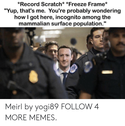 """Freeze Frame: *Record Scratch* *Freeze Frame*  """"Yup, that's me. You're probably wondering  how I got here, incognito among the  mammalian surface population."""" Meirl by yogi89 FOLLOW 4 MORE MEMES."""