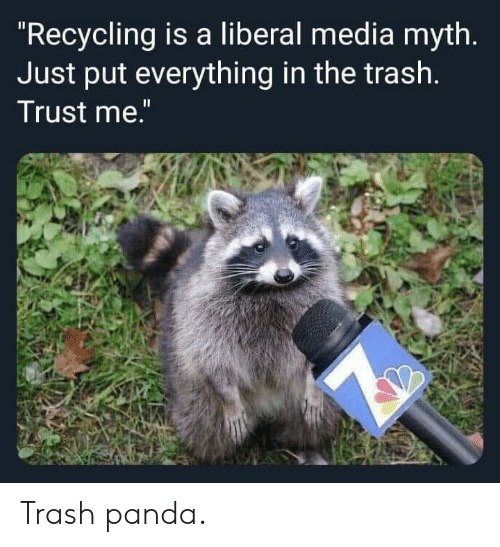 "Trash, Panda, and Media: ""Recycling is a liberal media myth.  Just put everything in the trash.  Trust me."" Trash panda."