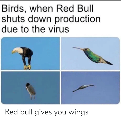 Gives: Red bull gives you wings