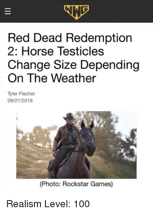 rockstar games: Red Dead Redemption  2: Horse Testicles  Change Size Depending  On The Weather  Tyler Fischer  09/21/2018  (Photo: Rockstar Games) Realism Level: 100