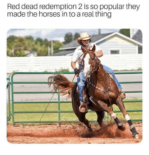 Horses, Dank Memes, and Red Dead Redemption: Red dead redemption 2 is so popular they  made the horses in to a real thing