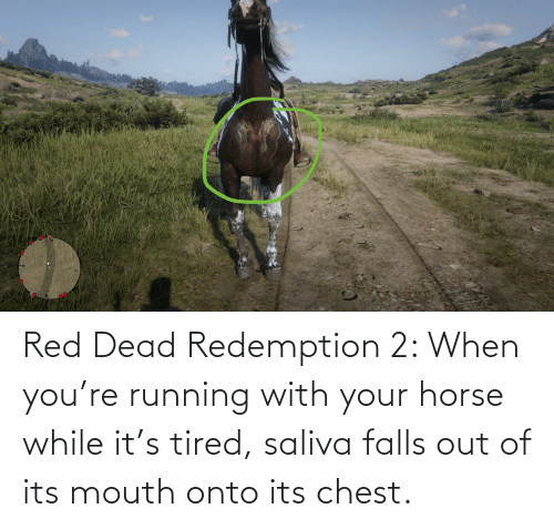 red dead: Red Dead Redemption 2: When you're running with your horse while it's tired, saliva falls out of its mouth onto its chest.