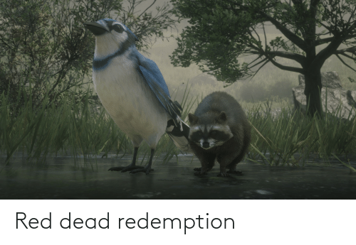 red dead: Red dead redemption