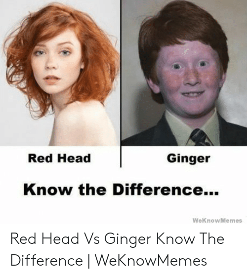 Red Hair Meme: Red Head  Ginger  Know the Difference...  WeKnow Memes Red Head Vs Ginger Know The Difference | WeKnowMemes