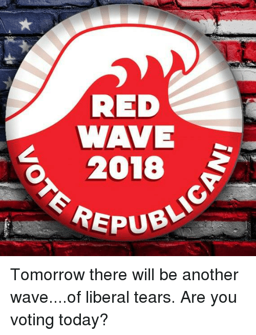 Today, Tomorrow, and Another: RED  WAVE  0, 2018  EREPU Tomorrow there will be another wave....of liberal tears.  Are you voting today?