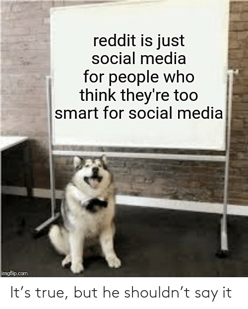 Say it: reddit is just  social media  for people who  think they're too  smart for social media  imgflip.com It's true, but he shouldn't say it