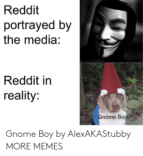 Portrayed: Reddit  portrayed by  the media:  Reddit in  reality:  nome Boy Gnome Boy by AlexAKAStubby MORE MEMES