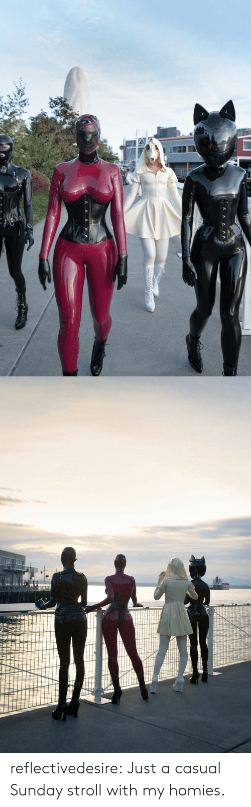 Tumblr, Blog, and Http: reflectivedesire:  Just a casual Sunday stroll with my homies.