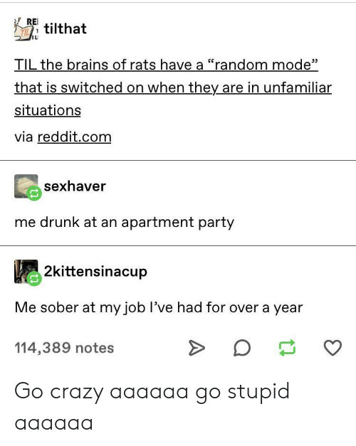"rei: REI  TILtilthat  IL  TIL the brains of rats have a ""random mode""  that is switched on when they are in unfamiliar  situations  via reddit.com  sexhaver  me drunk at an apartment party  2kittensinacup  Me sober at my job I've had for over a year  114,389 notes Go crazy aaaaaa go stupid aaaaaa"