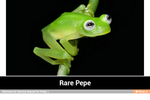 reinvent by quizzical maynard for ifunny rare pepe ifunnyco rare