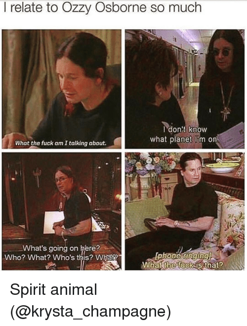 Ozzies: relate to Ozzy Osborne so much  I don't know  what planet Dom on  What the fuck am I talking about.  What's going on here?  lphone ringing)  Who? What? Who's this? Whata  What the fuck is that? Spirit animal (@krysta_champagne)