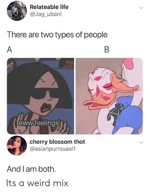 Dank, Life, and Thot: Relateable life  @Jag_ubani  There are two types of people  A  B  eww feelings  cherry blossom thot  @asianpurrsuasi1  And l am both. Its a weird mix